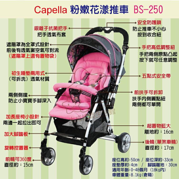 【大成婦嬰】Capella 銀離子 雙向秒收 花漾手推車 BS-250 1