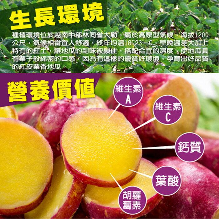 【鮮綠生活】優級紅皮栗香地瓜(1kg /包)~買越多越便宜