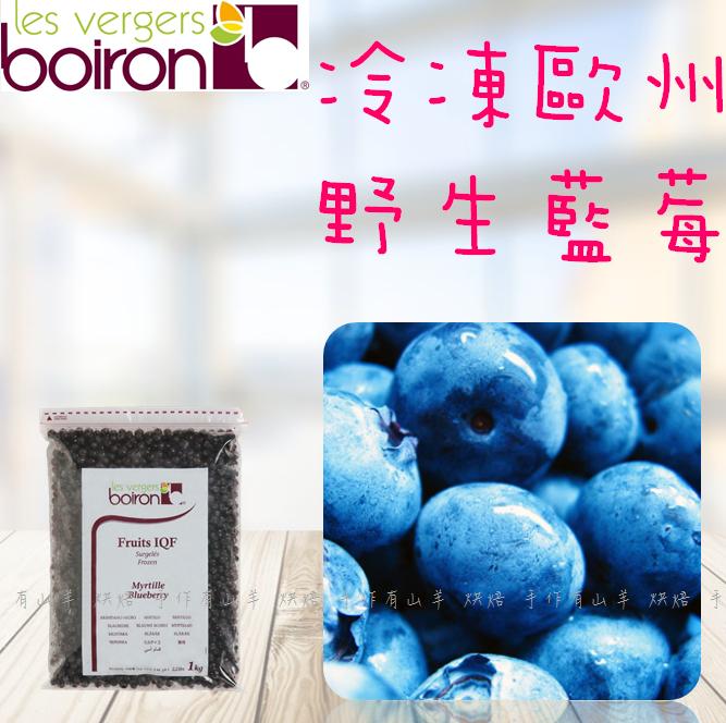 法國保虹 冷凍歐洲野生藍莓 (250g/包)