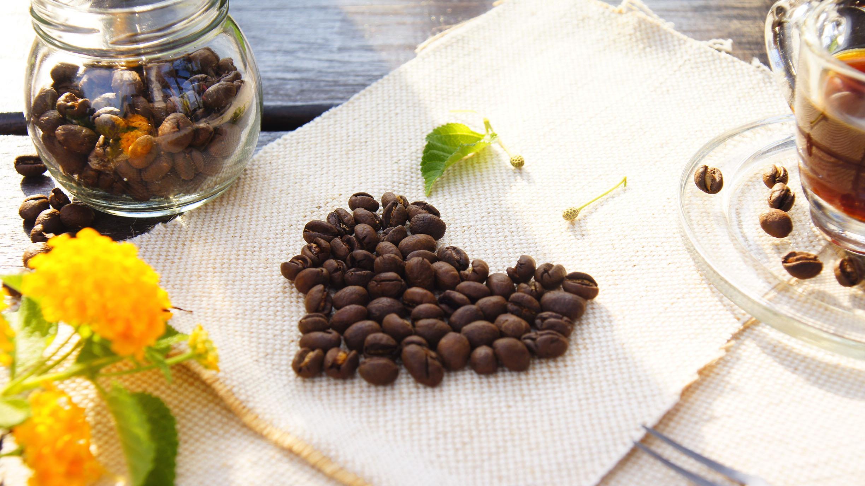 【威豆精品咖啡】馬拉威.白蜜.藝妓Geisha / 半磅 / 咖啡豆 / 中焙@團購優惠中@ 2