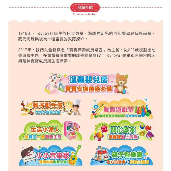 麗嬰兒童玩具館~樂雅專櫃-Toyroyal 二用音樂健力架 TF3805(新版) 2