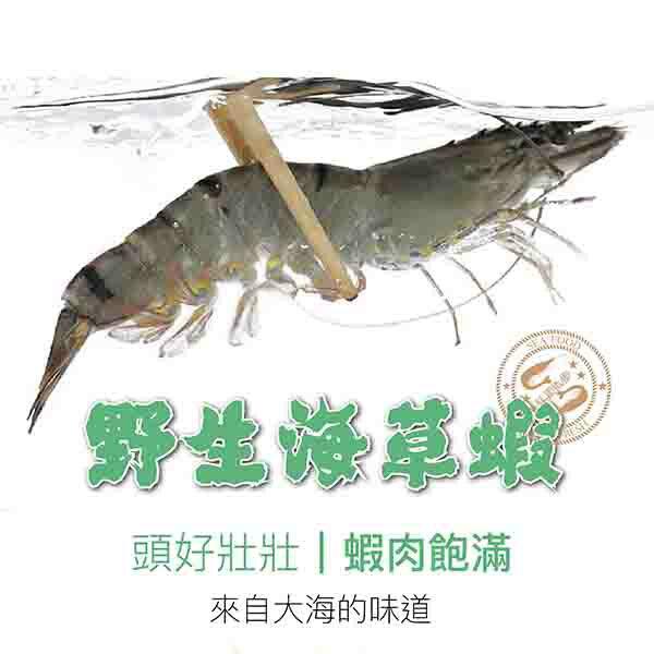 ★祥鈺水產★ 手臂長野生海草蝦 約400克重 內有5尾(盒) 非一般市售300g 露營烤肉