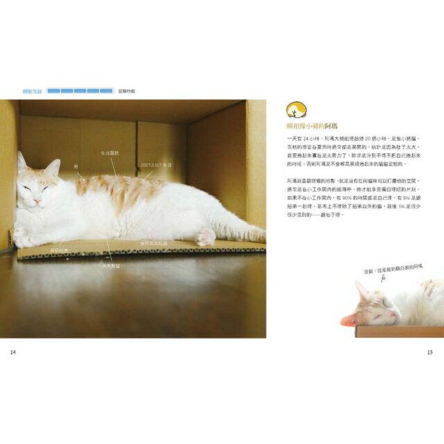 黃阿瑪的後宮生活:貓永遠是對的 3