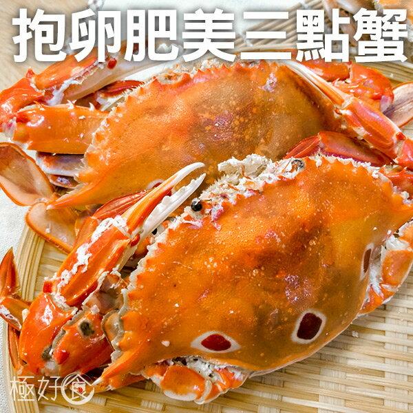 極好食:【爆黃濃郁】極好食❄肥美爆卵三點蟹-150-200g隻★1月限定全店699免運