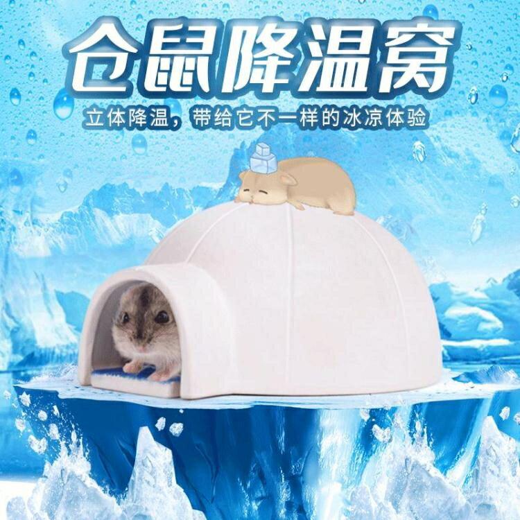 倉鼠窩 現貨 夏天降溫 房子降溫清涼屋 金絲熊小窩 可愛萌寵消暑睡窩 寵物用品 倉鼠陶瓷窩蒼 老鼠屋子