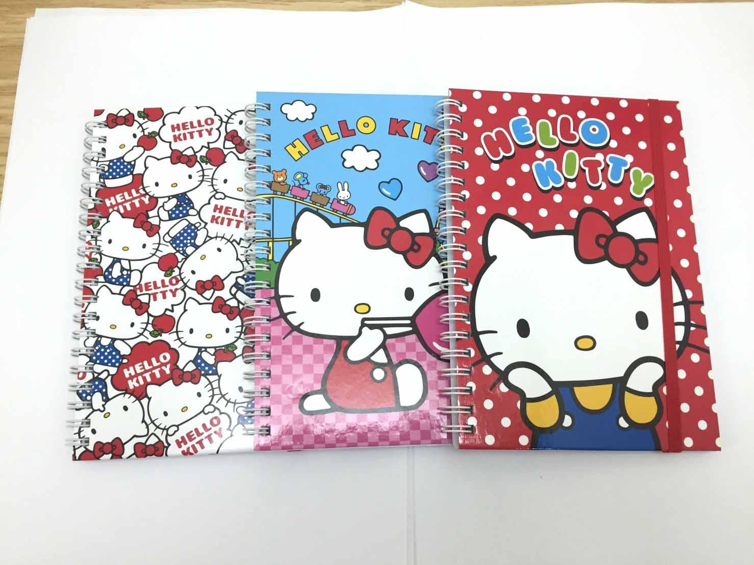 【真愛日本】17041100009 束帶筆記本L-KT3款 三麗鷗 Hello Kitty 凱蒂貓 記事本 筆記本