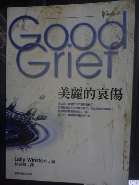 【書寶二手書T4/翻譯小說_GHZ】美麗的哀傷_原價390_林淑娟, 蘿莉.溫