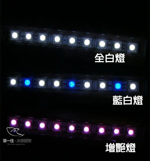 ^~第一佳 水族寵物^~ 伊士達ISTA 高亮度LED夾燈 ^~24cm~紅白增艷燈 ^(