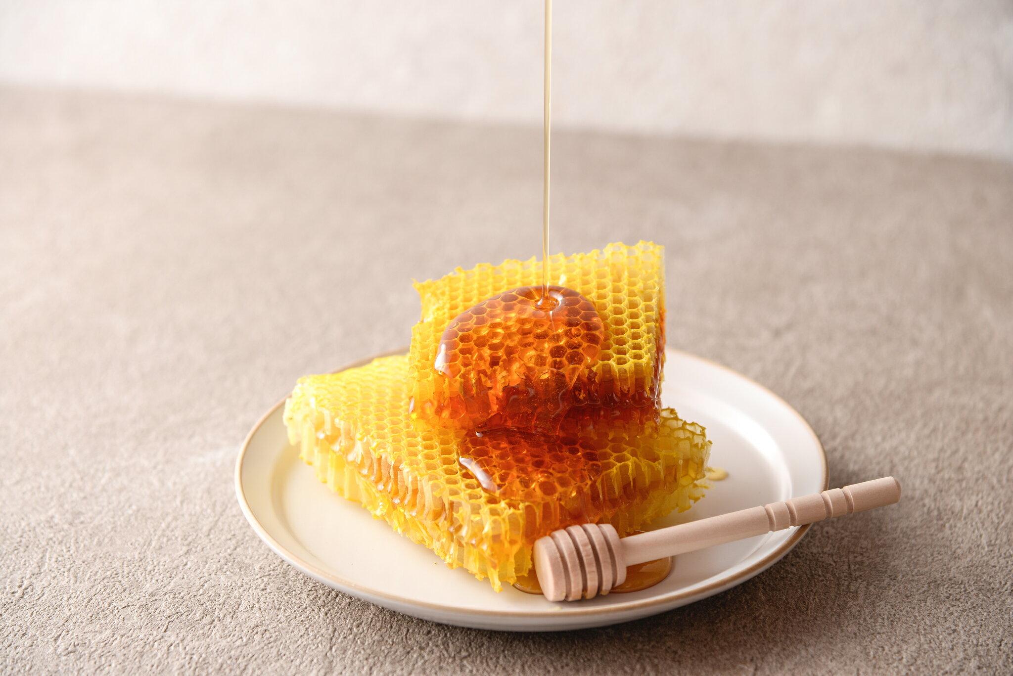野生蜂蜜 I 100%無添加 300ml入/瓶