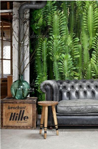 F128—綠意植物 荷蘭期貨影像HD大圖壁紙 自然 清爽 文青咖啡店風