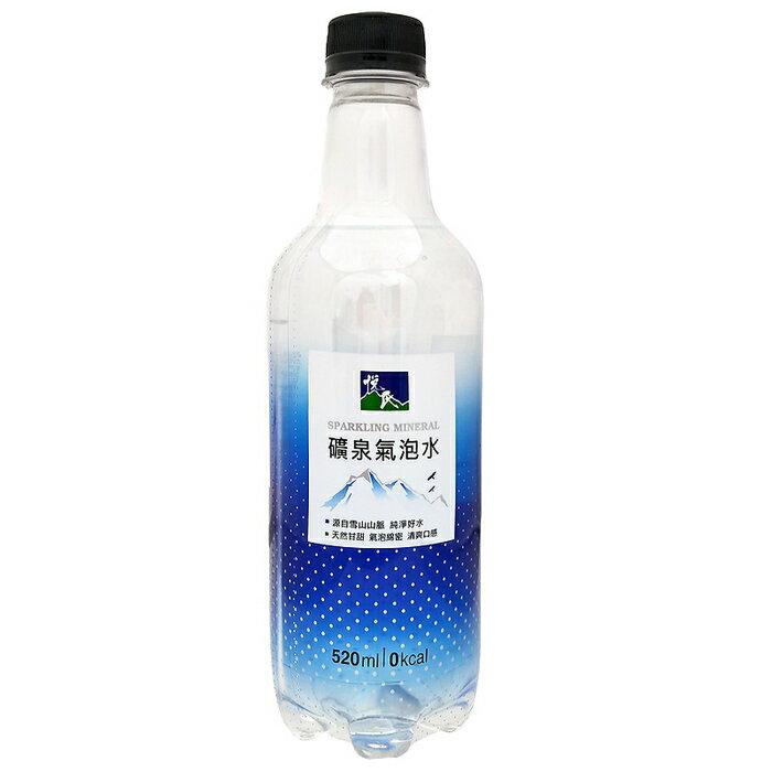 悅氏礦泉氣泡水520ml(24入)x2箱【康鄰超市】