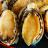 鮑魚 鮮美無比 水煮就能享受新鮮海味 無需複雜調味 約14顆裝【家適海鮮】家庭海鮮第一首選!全館四件免運 1