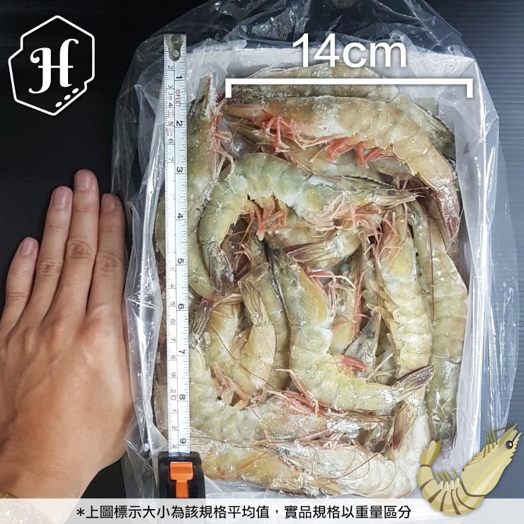 馬來白蝦  SGS無毒白蝦 份量自由挑 2~3人超享受【家適海鮮】全館四件免運 2