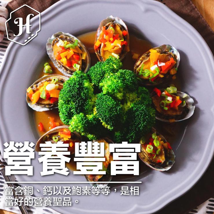 鮑魚 鮮美無比 水煮就能享受新鮮海味 無需複雜調味 約14顆裝【家適海鮮】家庭海鮮第一首選!全館四件免運 4