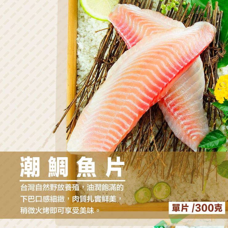 【免運】極品海鮮鍋 火鍋組合 5