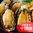 鮑魚 鮮美無比 水煮就能享受新鮮海味 無需複雜調味 約14顆裝【家適海鮮】家庭海鮮第一首選!全館四件免運 0
