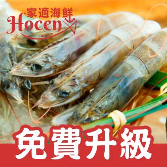 ~家適海鮮~~ 升級南美白蝦~鮮甜白蝦 50~60隻 1公斤裝 超澎湃 加量為1.15公斤