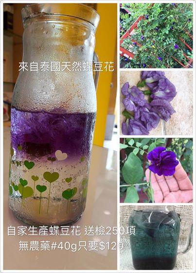 40g/袋 約600朵 泰國產地直送 乾燥蝶豆花瓣 蝶豆花茶 漸層飲 蝶豆花