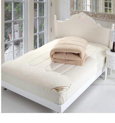 羊羔絨 廠家直銷瘋狂搶購超柔軟羊羔絨床墊加厚保暖床笠
