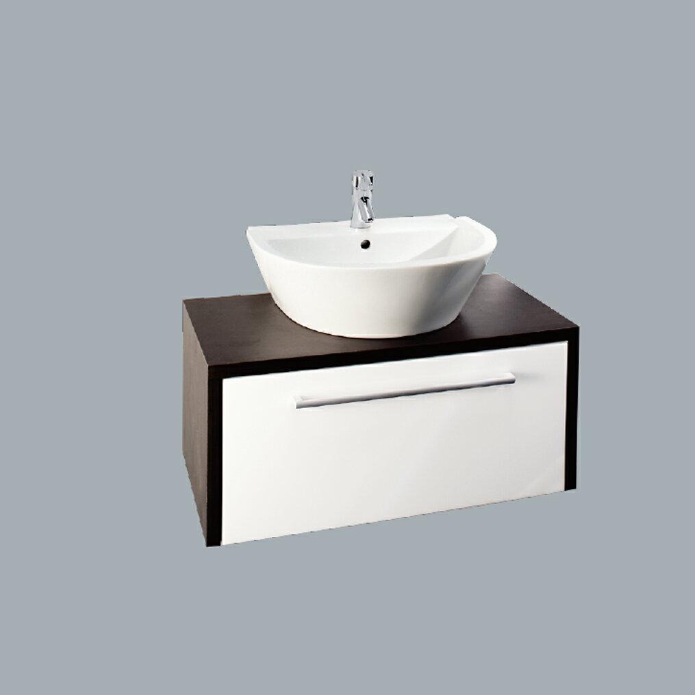 HCG臉盆浴櫃/不含水龍頭  /L5513NSAdbR+LCS5513B