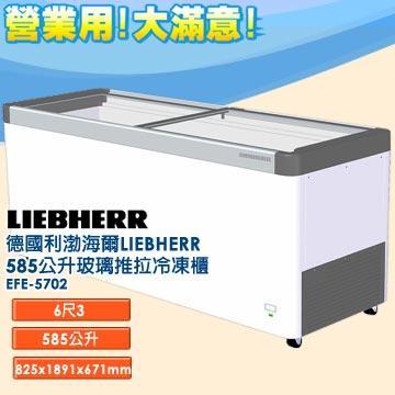 德國利勃 海爾 LIEBHERR 585公升 玻璃推拉冷凍櫃 EFE-5702 指針式溫度計 雙重鑄工輪子