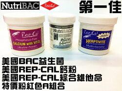 [第一佳水族寵物]美國NutriBAC益生菌+Rep-Cal鈣粉含磷D3+綜合維他命粉 爬蟲類烏龜用(紅色A優惠組合)