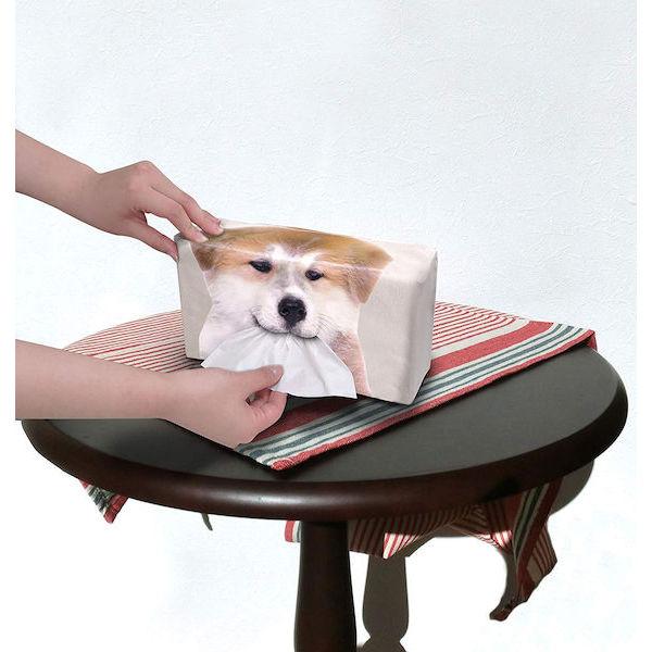 日本正版秋田犬吐舌面紙套