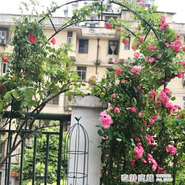 【快速出貨】鐵藝戶外葡萄引路架拱門花架薔薇爬藤架子月季絲瓜拱形攀爬花支架