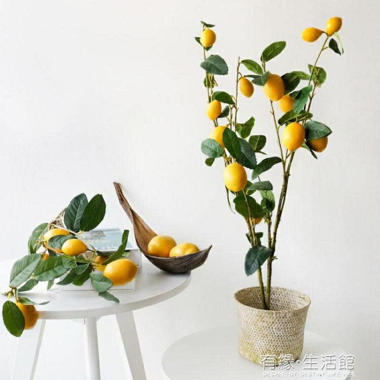 創意假果樹盆景 仿真綠植盆栽室內假檸檬樹ins北歐風客廳落地擺件  聖誕節狂歡購
