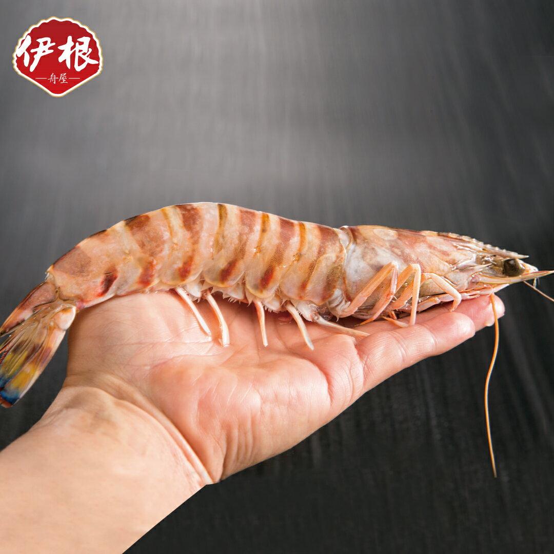 【伊根舟屋】野生特大隻大明蝦/450g一盒
