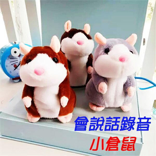 小熊日系* 學說話小倉鼠娃娃 錄音 超可愛小田鼠 錄音倉鼠公仔玩具模型 網路爆紅