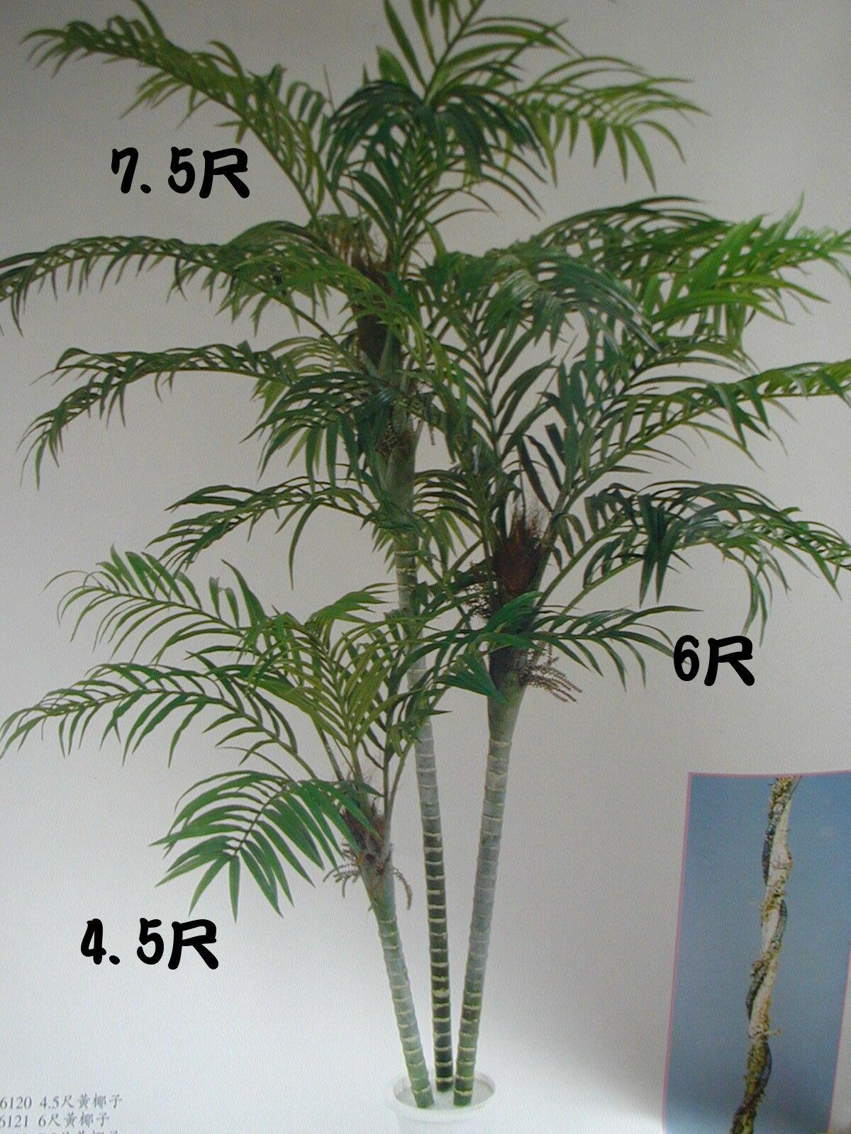 ★超低價★黃椰子 / 塑膠樹幹人造樹 空間 景觀 佈置 造景