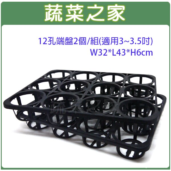 【蔬菜之家005-C91-12】12孔端盤2個/組(適用3~3.5吋)W32*L43*H6cm