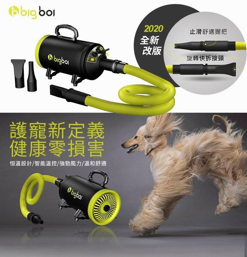 人氣2020改版新款【bigboi】MINI 寵物單馬達吹風機 吹水機 吹風機 乾燥 烘乾 洗澡 清潔 美容 貓狗必備