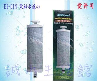 [全省免運費]原廠電解水濾心EI-01N適用安德成系列EMT5172/5173/5177