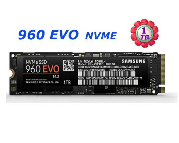 SAMSUNGSSD1TB1T960EVO【MZ-V6E1T0BW】M.2NVMe固態硬碟
