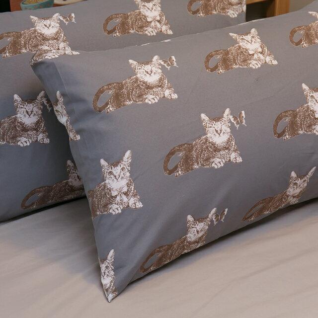 Iron cat 鐵灰小貓【床包駝色素色】單人/雙人熱賣組  舒適磨毛布 台灣製造 3