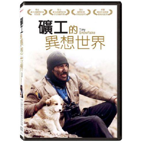 礦工的異想世界DVD