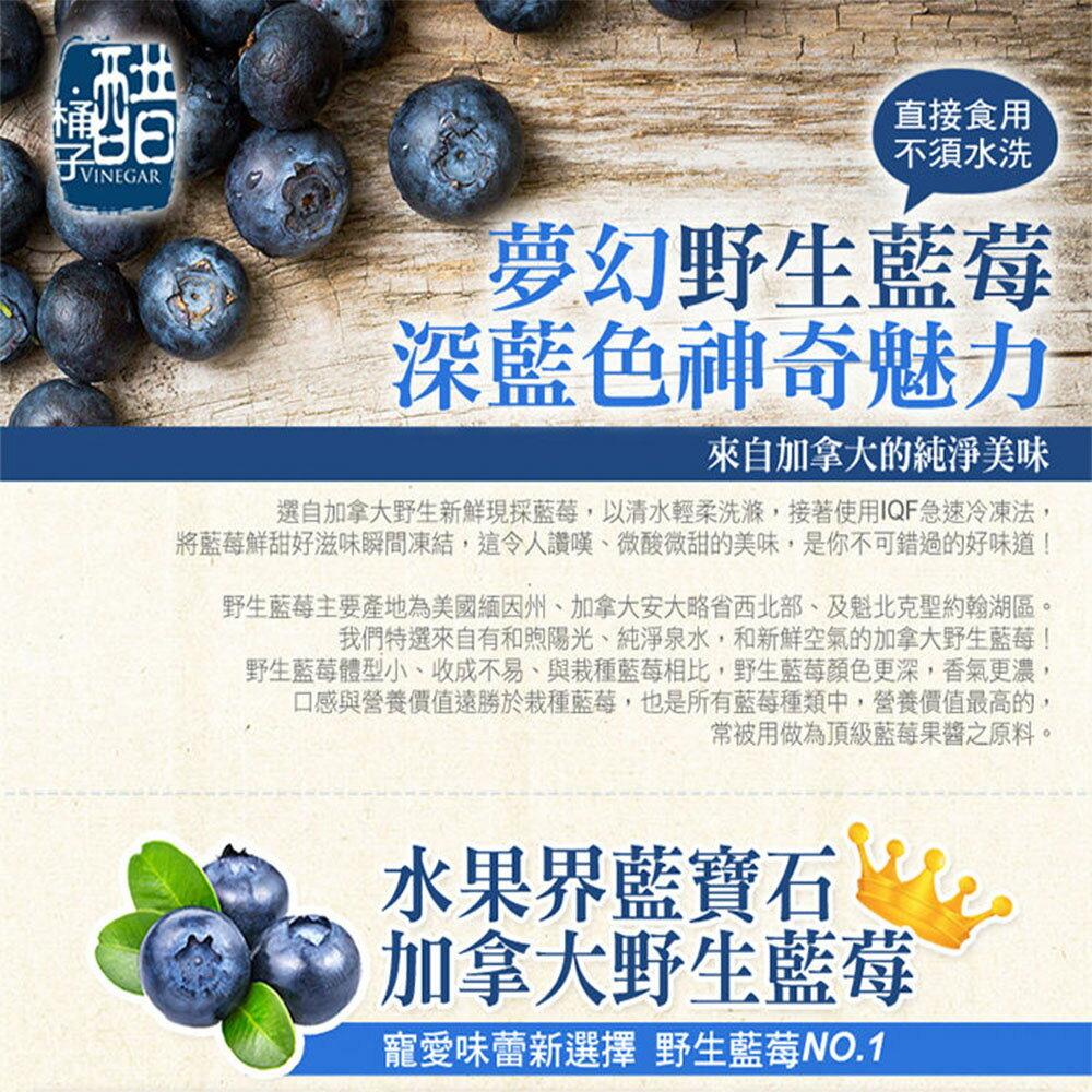 ▶【幸美生技】進口急凍莓果 加拿大進口野生藍莓 1公斤 4