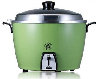 TATUNG 大同 電鍋 TAC-10L-SG 10人份電鍋 經典綠 不鏽鋼 內鍋 買就送檸檬酸清洗劑
