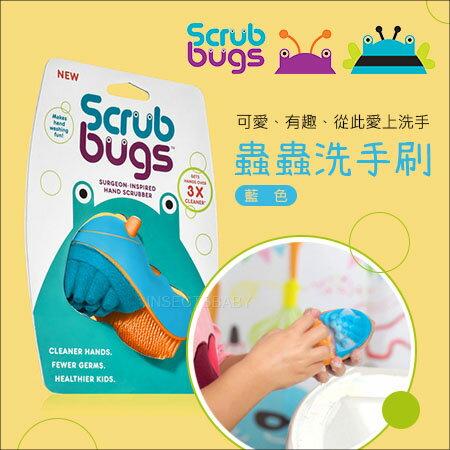 ✿蟲寶寶✿【美國Scrub Bugs】 讓寶貝愛上洗手~三勤洗手遠離腸病毒 倍清潔力 洗手蟲/清潔刷 藍色