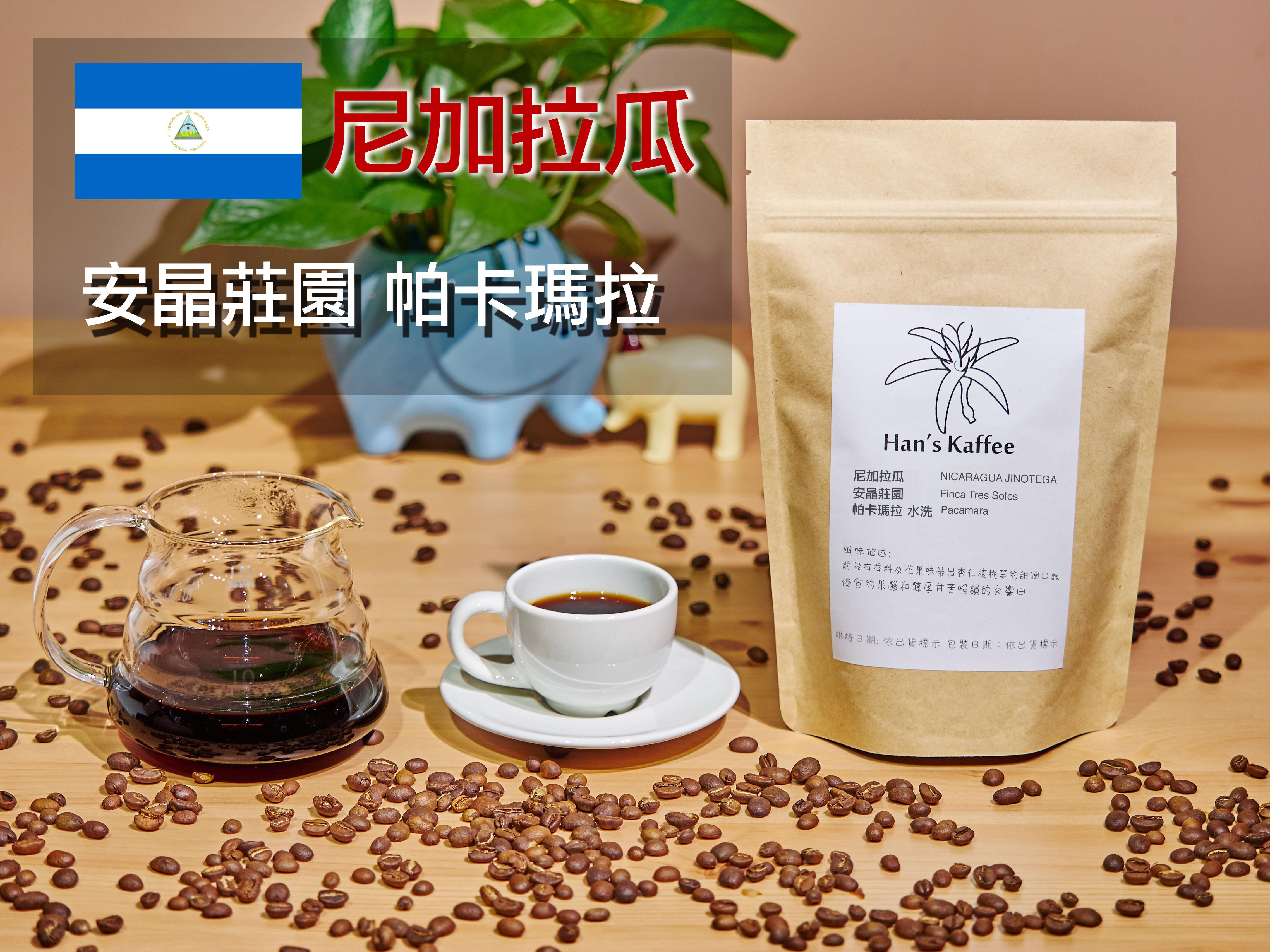 尼加拉瓜 安晶莊園 帕卡瑪拉 水洗 NICARAGUA JINOTEGA Finca Tres Soles Pacamara 咖啡豆一磅 接單烘焙