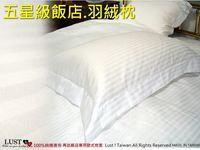 【東憶批發購物網】《五星級飯店專用-羽絨枕》1.4˙1.6˙1.8KG 【送飯店歐式緹花枕套】