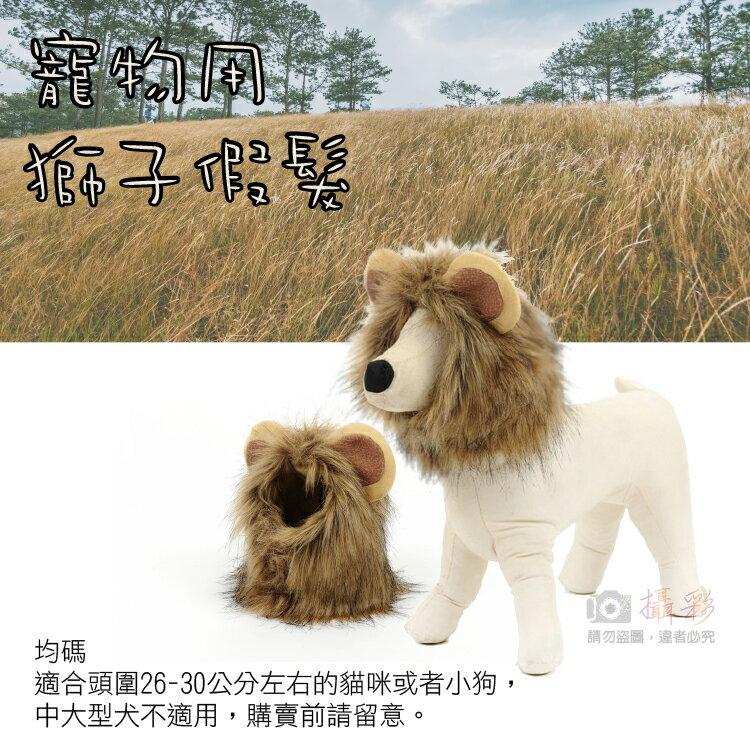 攝彩~寵物用 獅子假髮 貓咪狗狗搞笑獅子頭套頭飾髮飾 防寒 變裝趴扮萌扮兇扮酷 獅子頭帽子