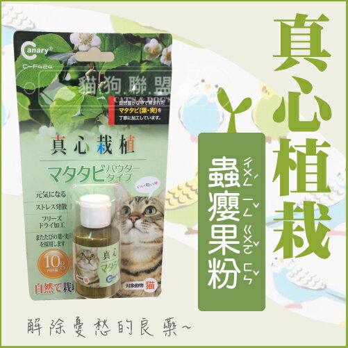 +貓狗樂園+ Canary【真心栽植。蟲癭果粉。10g】130元 - 限時優惠好康折扣