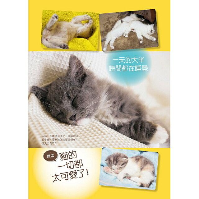 新手養貓必備書  暢銷版 4