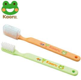 哈皮蛙 Kaeru 攜帶式幼童牙刷18-36m x1入 (綠/橘)【悅兒園婦幼生活館】