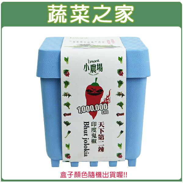 【蔬菜之家004-D12】iPlant小農場系列-鬼椒
