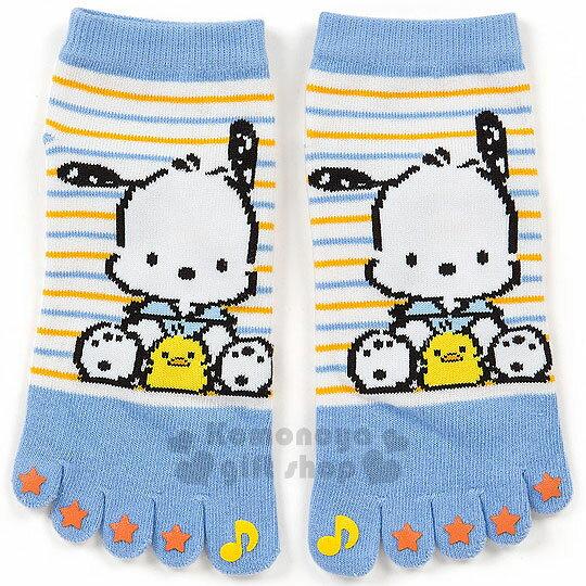 〔小禮堂〕帕恰狗 成人五指及踝襪《藍黃.條紋.坐姿.小雞.星星》適穿腳長23-25公分