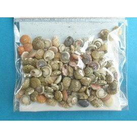 貝殼(小沙米螺)/包{10}